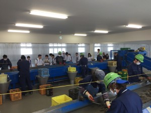 2016-hp-kengaku-2